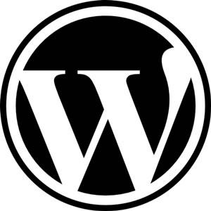 WordPressでブログを始めるときにいちばんオススメの本を4冊から選びました