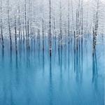 Mountain Lionの壁紙に採用された北海道の写真家Kent Shiraishi氏の写真をiPhoneとiPadにも!