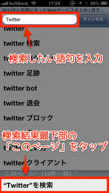 Safari search 2