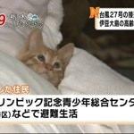 台風で避難してる住民が可愛いいとTwitterで話題