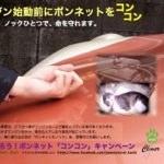 「エンジン始動前にボンネットをコンコン」冬場の車の運転前にボンネットに動物が入り込んでいないか確認を!
