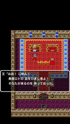 Dragon quest portal 6
