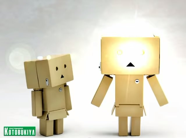 Danbo action figure 5