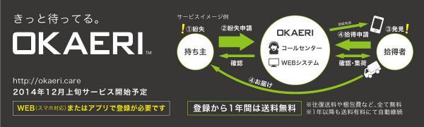 Iphoneaccessory iphone6 lifeproof 2