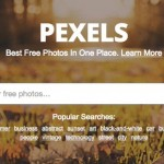 16-Pexels.jpg