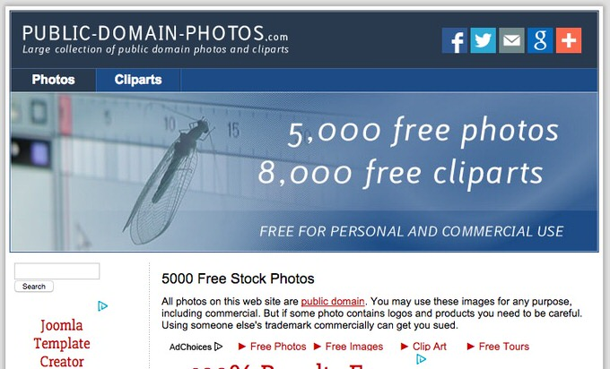 48 5000 Free Stock Photos