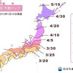 2015年桜の開花・満開予想発表!東京は3/23に開花、満開は3/31頃