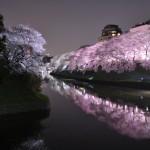 これは絶景!千鳥ヶ淵の桜が美しすぎると話題