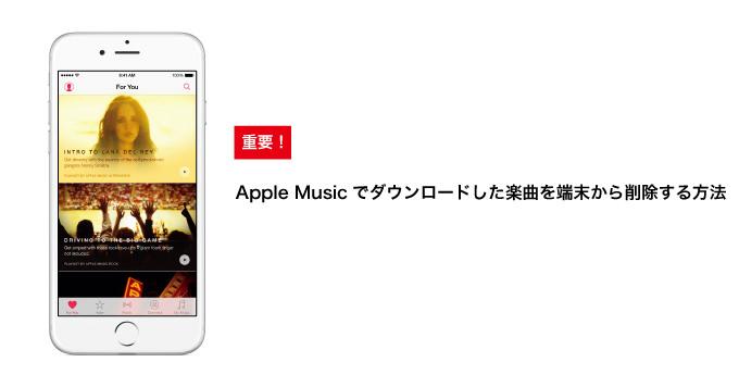Apple music delete