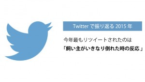 Twitter「2015年最もリツイートされたツイートランキング」や「Twitterで振り返る2015年」を公開