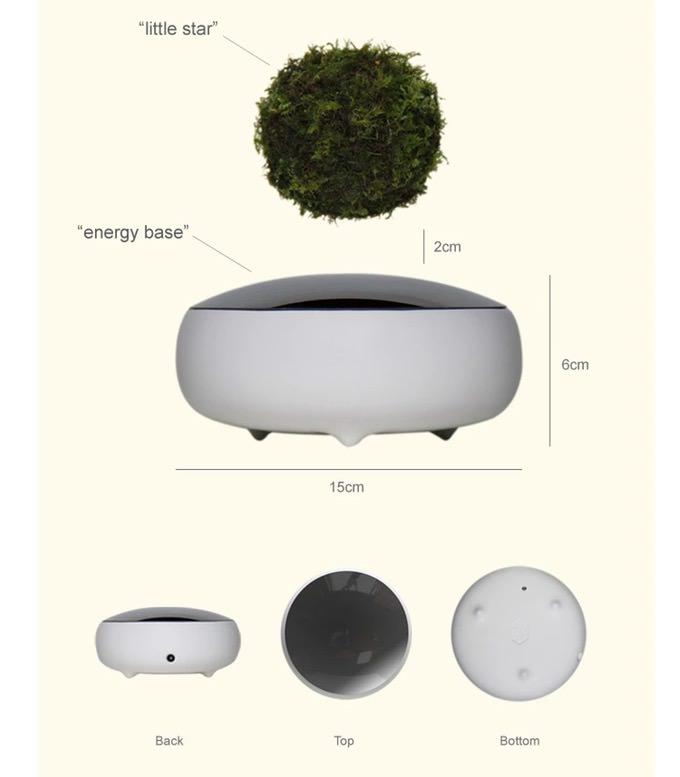 Air bonsai 3