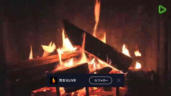やばいめっちゃ癒される ―― LINE LIVEで「焚き火」がライブ配信中!