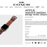 coach-leather-strap-charms.jpg