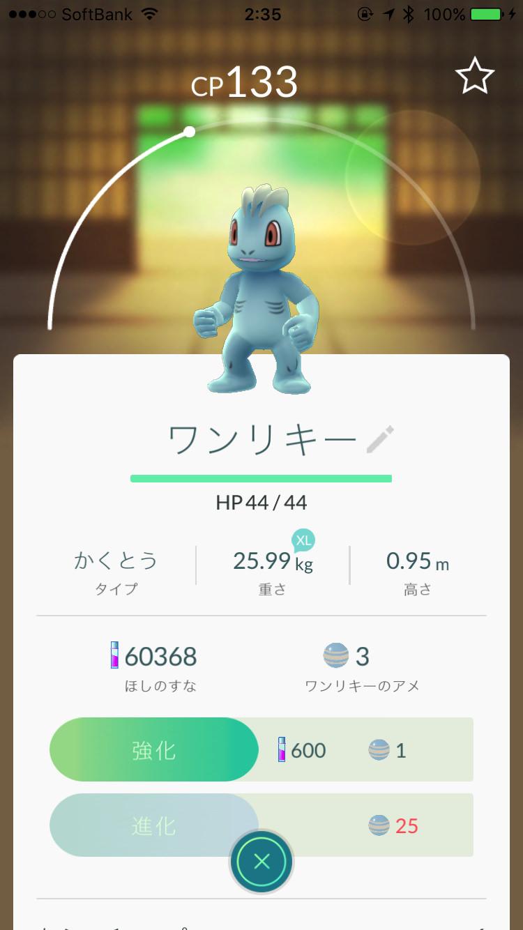 Pokemon go 29