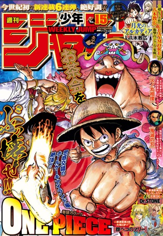 Jump cover 15