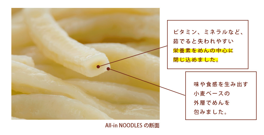 all-in-noodle-3