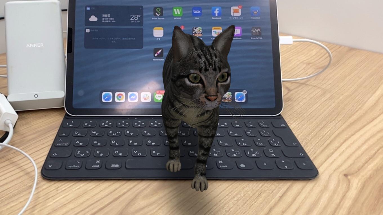 誰でもネコが飼える!? Googleで「ネコ」と検索すると、ARで動くネコが出現――犬やペンギン、パンダなども対応
