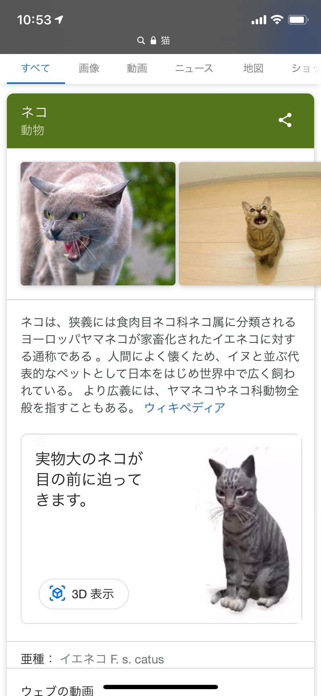 google-ar-animal-2