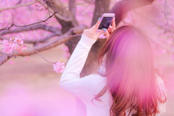 最大50%OFF「KADOKAWA春の大セール」「Kindle春の大セール」は間もなく終了