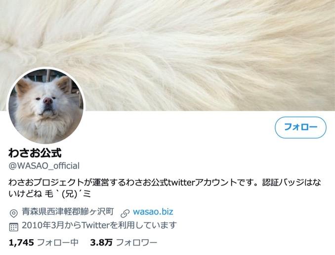 ブサカワで人気の秋田犬「わさお」死ぬ、4月頃から急激な足腰の衰えも