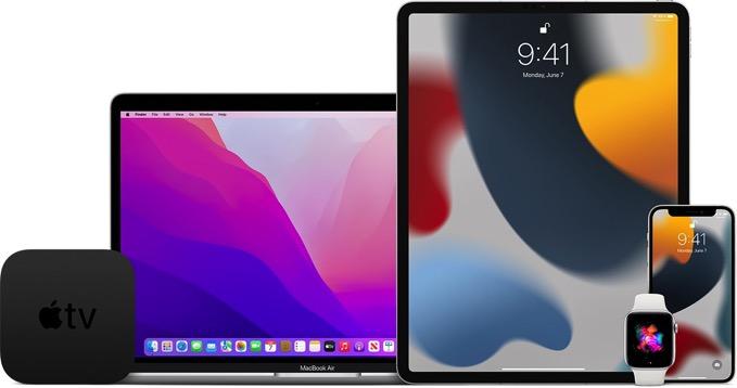 「iOS 15」「iPadOS 15」「watchOS 8」パブリックベータの配信開始